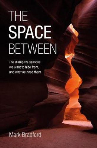 Picture of The Space Between