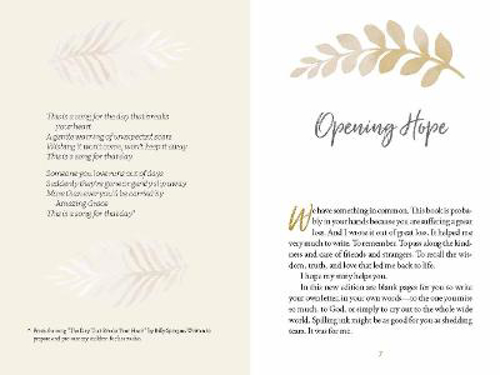 Picture of LETTERS TO A GRIEVING HEART